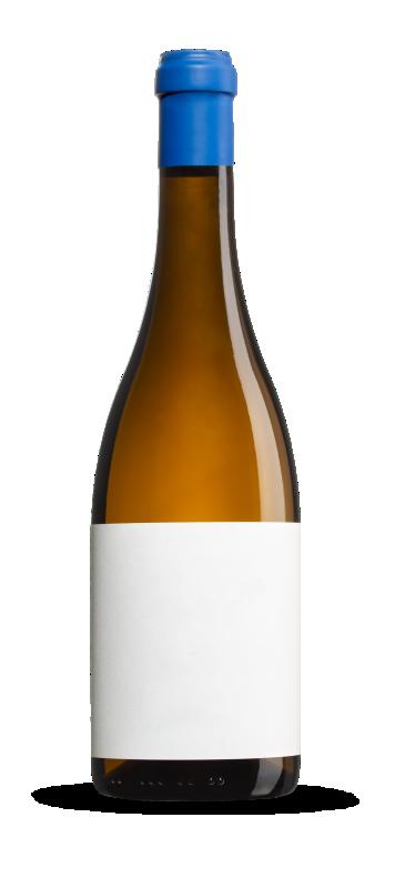 Fotografía de producto de botellas de vino
